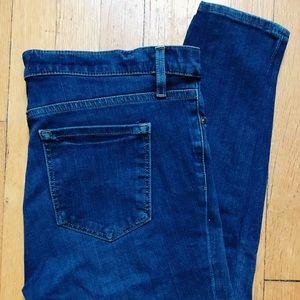 LOFT   Denim Jeans